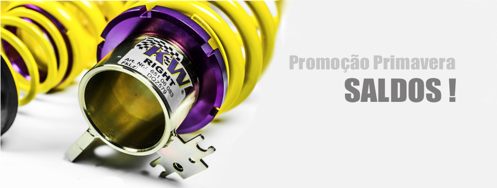 Coilovers KW